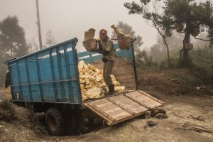 A miner is unloading his load of sulfur to one of the trucks. After this the sulfur will be taken to a processing plant. Sulfur in general is used for medical products like soap or skin products.
